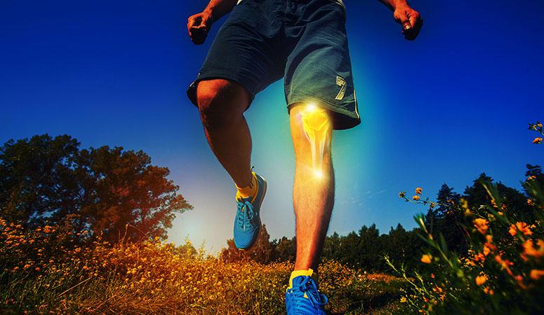 knee orthopedic services